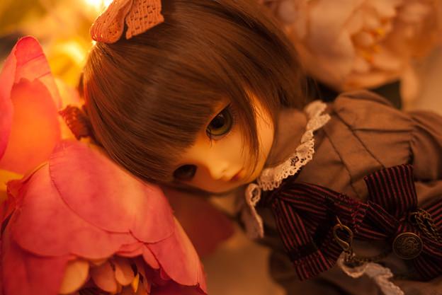 写真: アンニュイめぐちゃん