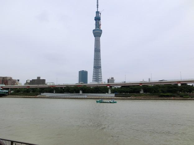 Photos: 隅田川とスカイツリー